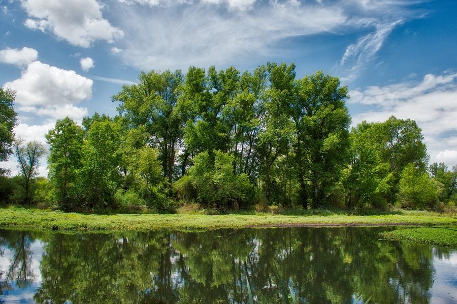 Loire, photographie nature, zipanatura