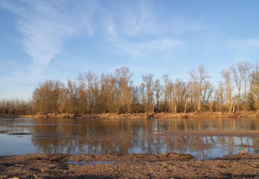 Loire en hiver