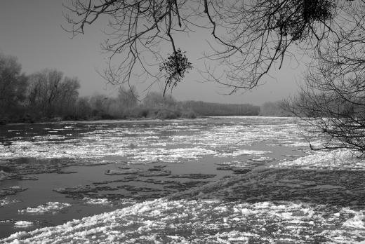 Loire des glaces