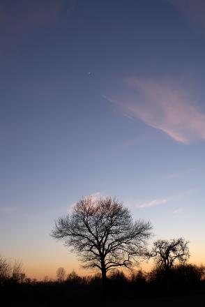 Lune au couchant