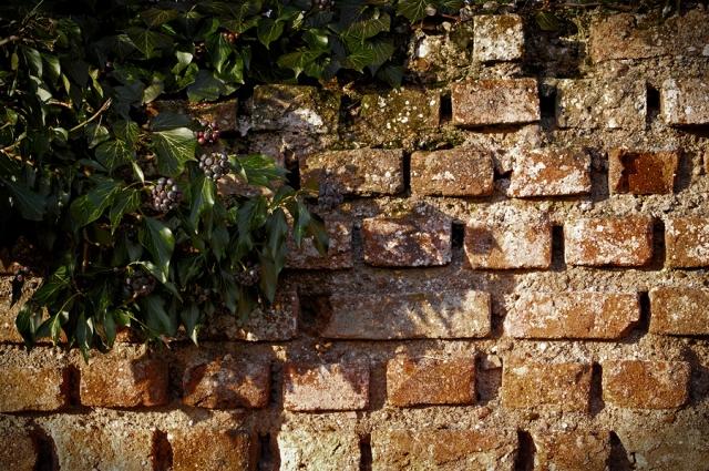 Le mur du temps