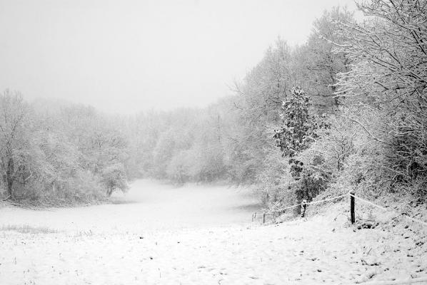 Pré de la neige