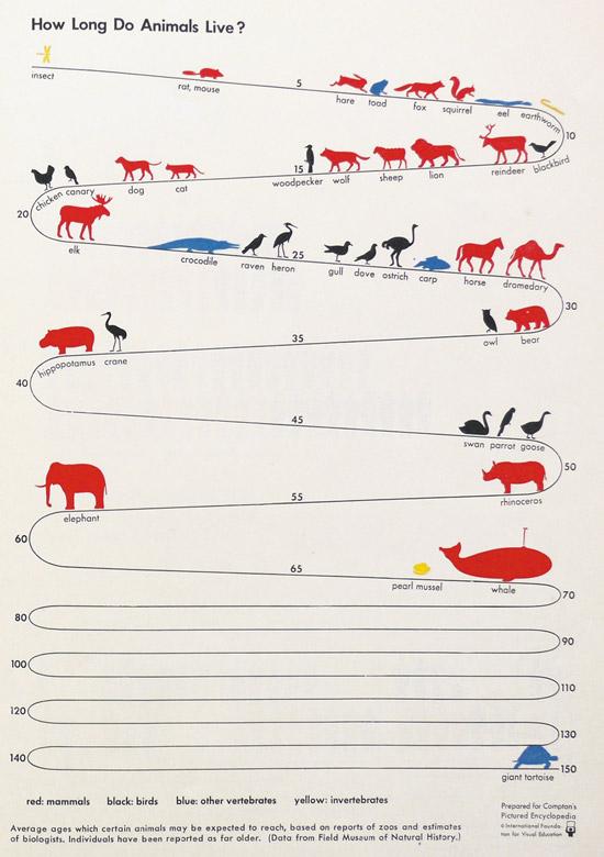 longevite-animaux